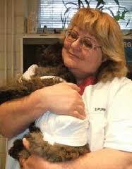 Dr Kiss Gabriella állatorvos kutyaepilepszia szakértő
